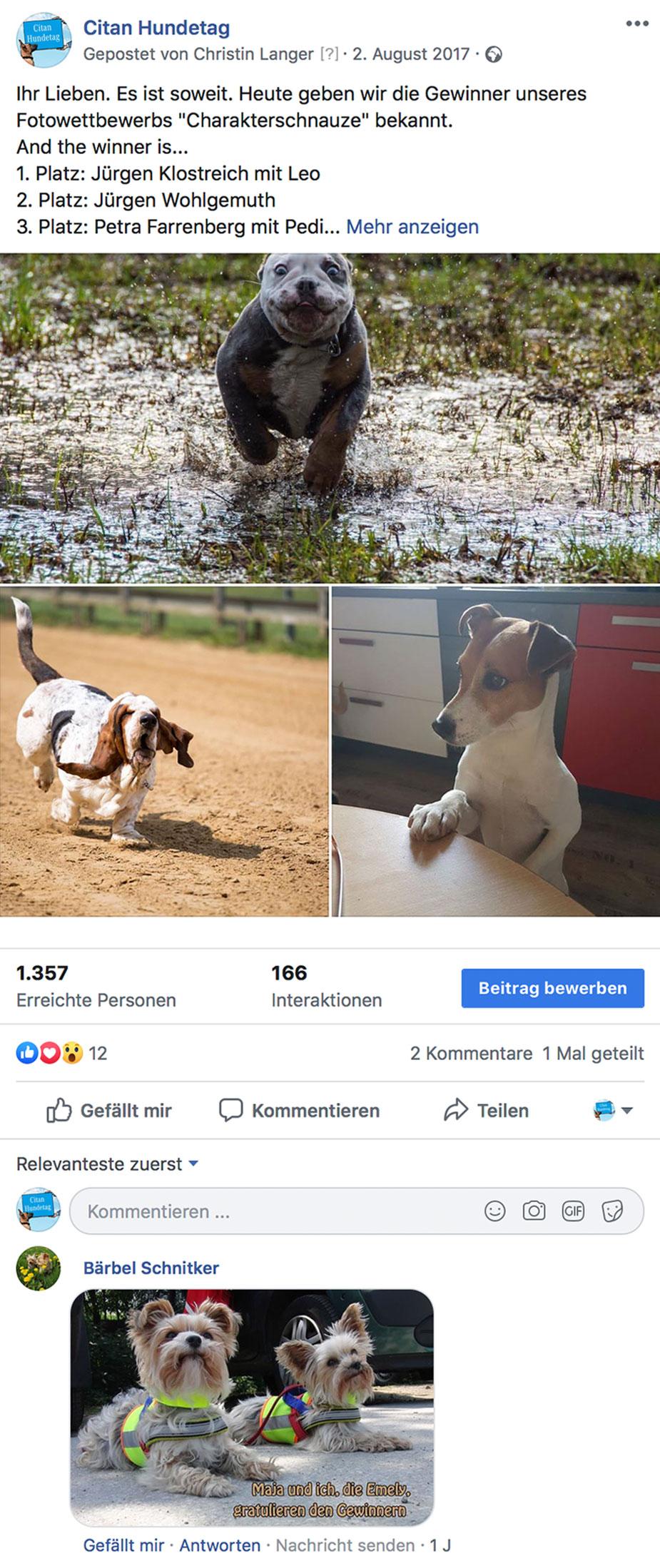 Citan Hundetag Facebook